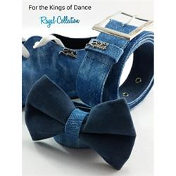 Aries Dance Shoes Aries King1